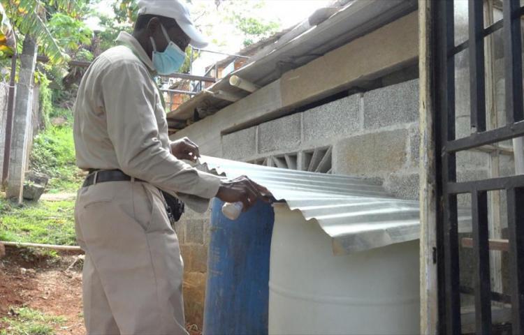 Minsa reporta 210 casos de dengue