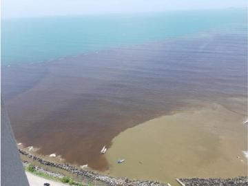 Reportan mancha oscura en costa de la Bahía de Panamá