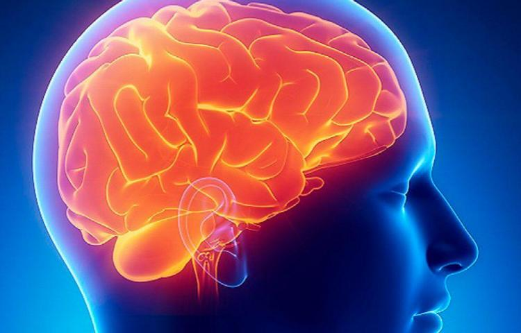 Descubren tratamiento contra el Alzheimer