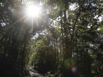Termina la Cumbre biodiversidad ONU con nuevos llamamientos a tomar medidas